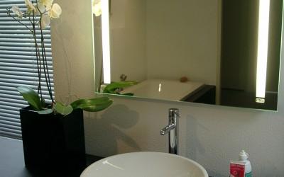 Badkamer: MDF met wengé fineer met spiegel waarachter verlichting