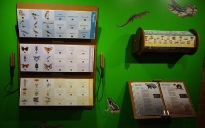Schapedrift Ermelo: Electrospel, gemaakt van beplakt en gelakt MDF