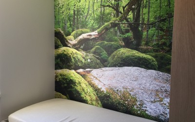 Bed, materiaal MDF bekleed met HPL extreem mat, Poster, materiaal Airtex